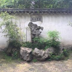 Humble Administrator's Garden User Photo