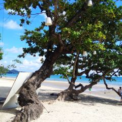 White Sand Beach User Photo