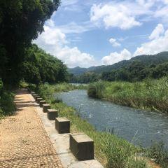 Luocheng Jianjiang Scenic Area User Photo