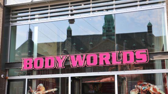人体の世界