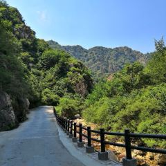 八仙山自然保護区のユーザー投稿写真