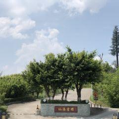仙海風景區用戶圖片