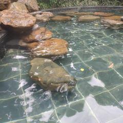 Kuncheng Tangan Hot Springs Resort User Photo