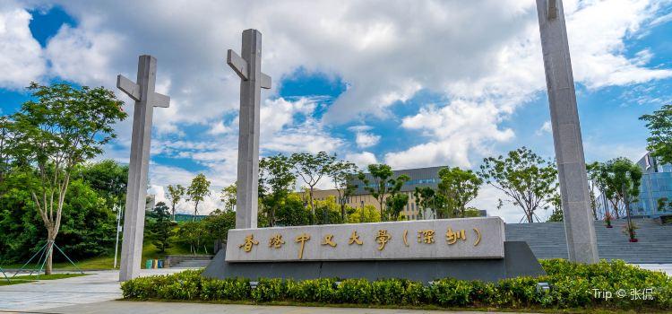 The Chinese University of Hong Kong1
