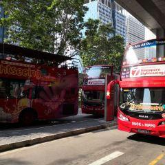 FunVee Open Top Bus User Photo