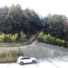 Jinfeng Park User Photo