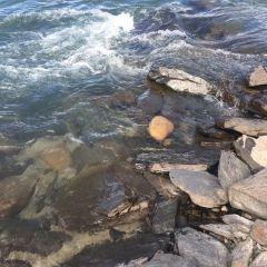 尼洋河用戶圖片