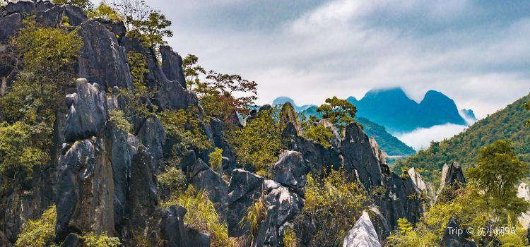 玉石林風景區