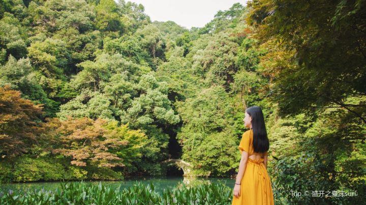 杭州旅行分享