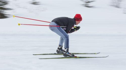 위양 스키장