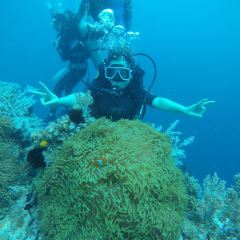 Doljo Beach Diving User Photo