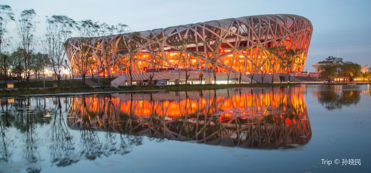 Bird's Nest (National Stadium)3