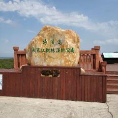 海陵島紅樹林國家濕地公園用戶圖片
