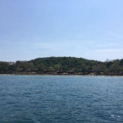 羅薩瑪灣用戶圖片