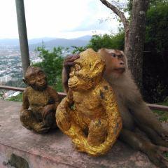 Monkey Hill User Photo