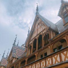 酒店博物館用戶圖片