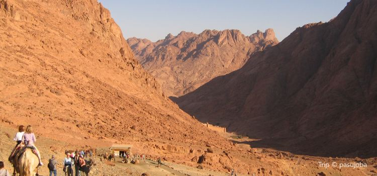 Saint Catherine Area1