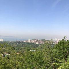 太平山景區用戶圖片