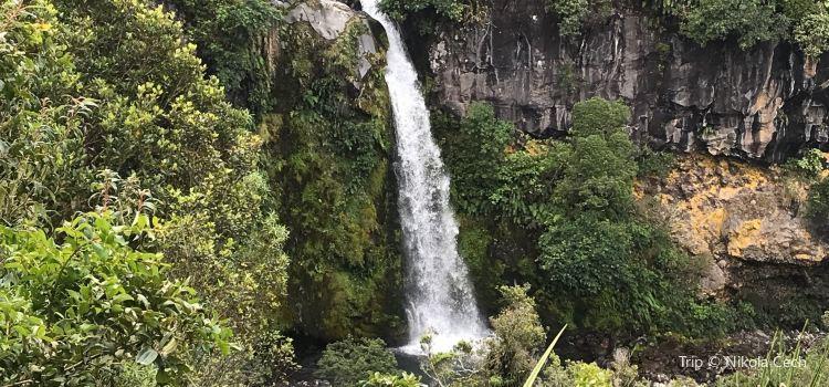 Dawson Falls1