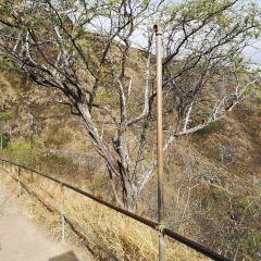 科科角地區公園用戶圖片