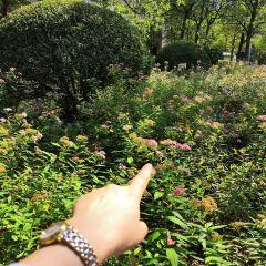 博愛公園 用戶圖片