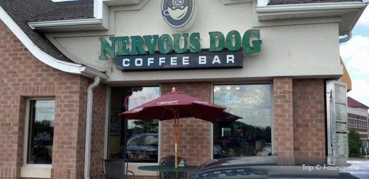 Nervous Dog Coffee Bar3
