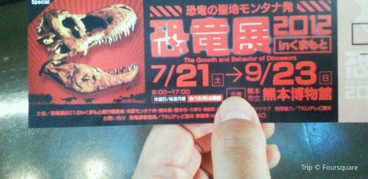 熊本市立熊本博物館3