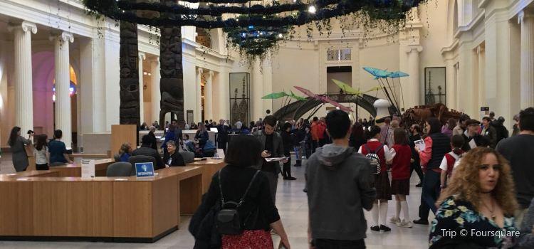 Field Museum Store3