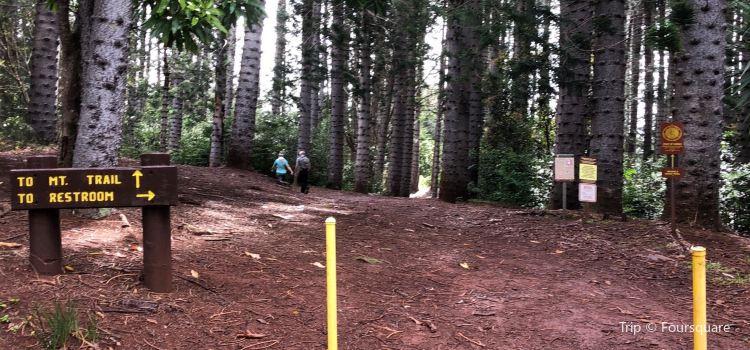 Wa'ahila Ridge State Recreation Area1