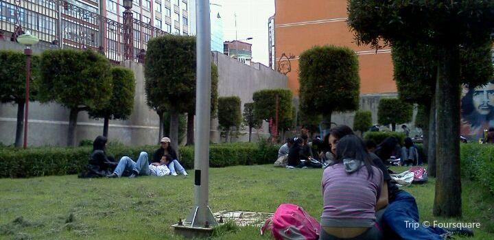Universidad Mayor de San Andres3