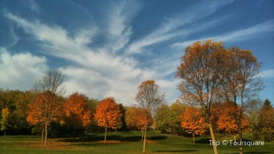 Hanlon Creek Park