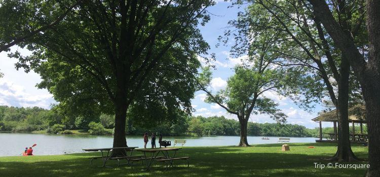 Homer Lake Forest Preserve2