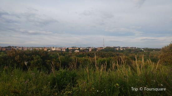 Parco Regionale Urbano del Pineto
