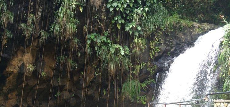Annandale Falls3