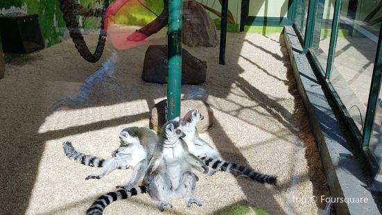 Tierpark Gettorf