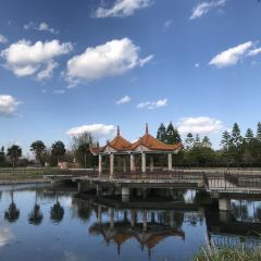 Xinhekou Lake Garden User Photo