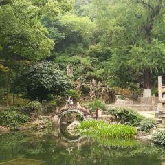 亭林園用戶圖片