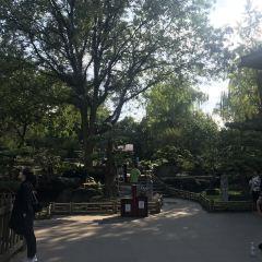 Ya Culture Park User Photo