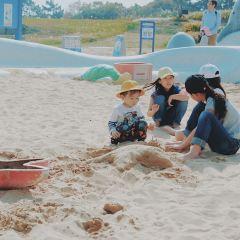 海濱公園用戶圖片