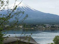 富士山温泉-富士吉田市-M30****8293