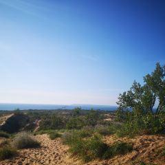 睡熊沙丘國家湖岸風景區用戶圖片