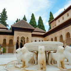 Nasrid Palaces User Photo