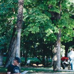 麗池公園用戶圖片