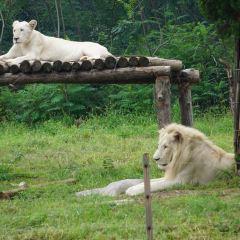 濟南野生動物世界用戶圖片