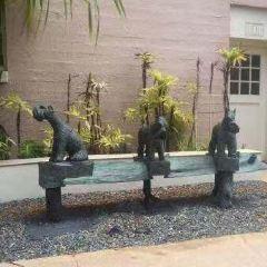 Hawai'i State Art Museum (HiSAM) User Photo