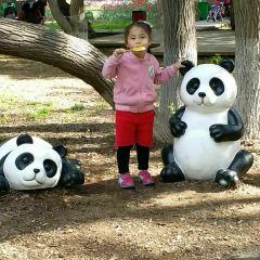 난후 공원 여행 사진