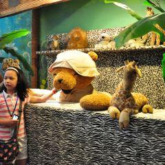 테디베어 박물관 여행 사진