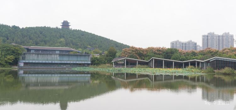 徐州漢文化景區3