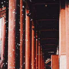 普壽寺用戶圖片