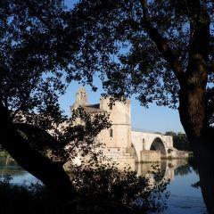 阿維尼翁老城用戶圖片